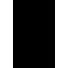 Beko GNE480E20ZXP amerikaanse koel/vries (B-Keus)